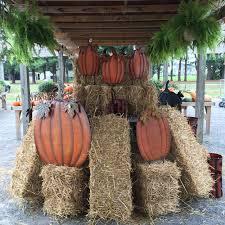 Fall Hay Decorations - https static1 squarespace com static 54a718d5e4b