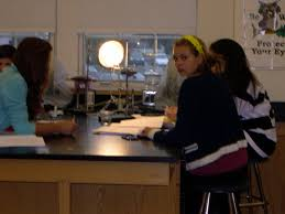 Lab Bench Transpiration 8 Transpiration Lab Bench Pearson The Biology Place The