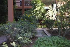 green roof jc raulston arboretum