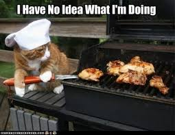 Dog Cooking Meme - 30 dogs who have no idea what they re doing