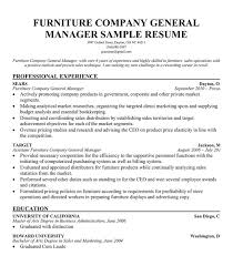 Sales Associate Objective Resume Cover Letter Examples Vp Sales Throughout Vice President Of