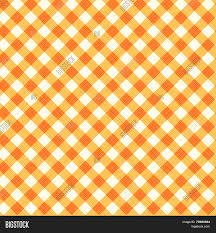 thanksgiving autumn gingham fabric vector photo bigstock