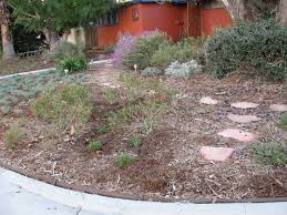 Backyard Ground Cover Options Smother And Replace Your Lawn With Mulch 10 Steps With Pictures
