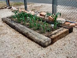 Rock Vegetable Garden Arizona Raised Bed Vegetable Fruit Tree Gardens Arizona