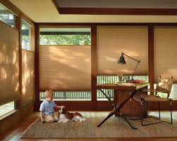 Elegant Window Treatments by Bathroom Master Bedroom With Remarkable Window Hunter Douglas