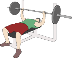 What Do Bench Presses Work Out A 30 Minute Workout