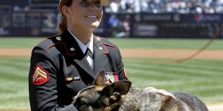 real life megan leavey u0027happy u0027 with depiction of bond with sgt rex