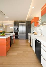 Kitchen Unit Designs Pictures 67 Best Kitchens In Colour Images On Pinterest Modern Kitchens