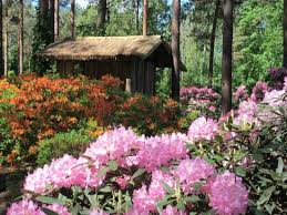 botanical sts japanese garden picture of vilnius botanical garden