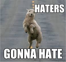 Haters Gonna Hate Meme - the haters gonna hate meme you need in your life sayingimages