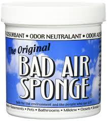 Ammonia Smell In Bathroom Amazon Com Ammosorb Reusable Ammonia Smell Removal Deodorizer