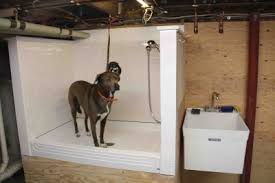 How To Plumb An Outdoor Shower - to build a dog wash station