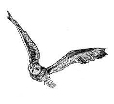 tribal owl tattoo 55 amazing flying owl tattoos ideas