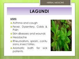 10 doh approved herbal medicine