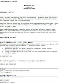 sales manager cv example free template management jobs in team