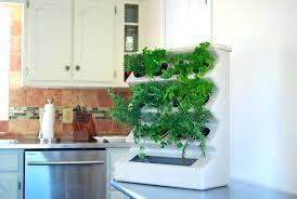 indoor kitchen garden ideas hanging kitchen herb garden indoor herb garden ideas kitchen diy