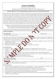 Sample Senior Executive Resume by Sample Senior Executive Resume Free Resume Example And Writing