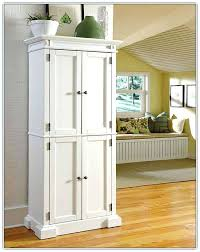 kitchen cabinet pantry ideas awesome pantry cabinet ikea pantry cabinets with high cabinet pantry