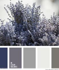 lavendel color palette color combination pinterest color