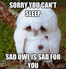Meme Sleepy - 79 brilliant sleep memes