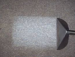 best 25 best carpet cleaning companies ideas on