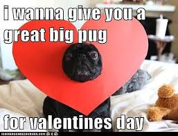 Happy Valentine Meme - 14 perfectly sarcastic expressions of valentine s day torture