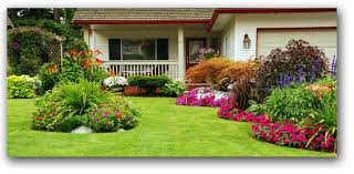 expert landscape designs ams lawn u0026 landscapes