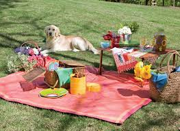 creative ideas for packing perfect picnic