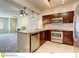 modern kitchen interior with mahogany cabinets stock photo norma