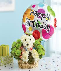 flowers and balloons 1 800 flowers party animal at from you flowers