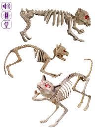 skeleton dog halloween prop