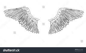 illustration pair eagle wings that setup stock illustration