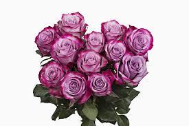 lavender roses lavender roses fresh online flowers wedding flowers bulk