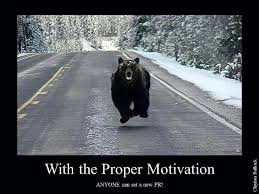 Running Bear Meme - running tough mudder in a bear costume and raising money to help