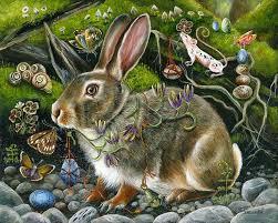 Emma Freud Rabbit Hutch 633 Best Conigli Images On Pinterest Bunny Art Animals And Draw