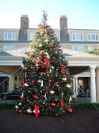 half moon bay christmas tree farm part 29 my dream to own a