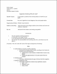 persuasive essay outline and example top essay writing