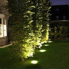 using pot lights at the base of a tree or shrub creates a great