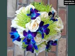 blue orchid flower blue orchid flower bouquet flowers and buds pictures