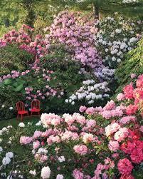 Flower Garden Ideas Pictures 7 Flower Garden Ideas Martha Stewart