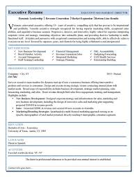 free resume template builder resume review service templates resume template builder http www