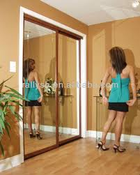 Mirror Doors For Closet Sliding Mirror Closet Doors Mirrored Closet Doors Home Design