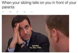 Funny Sibling Memes - brothers and sisters will definitely relate to these 22 hilarious memes