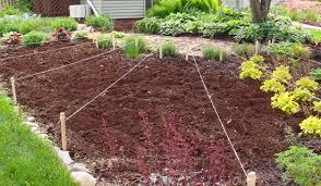 impressive best soil for raised vegetable garden soil for raised