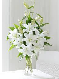george preston florist blog latest news and updates from george