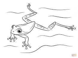 coloring page coloring pages frog delightful 1 l page coloring
