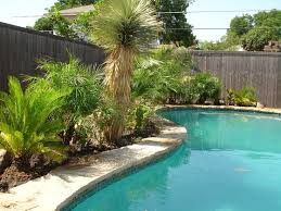 Backyard Designs With Pool Best 25 Plants Around Pool Ideas On Pinterest Landscaping
