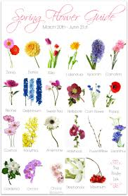 spring wedding flower guide lovely wedding bouquet and flower