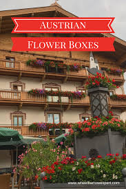 austrian window boxes wheelbarrow expert