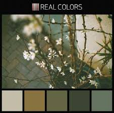 120 best color schemes images on pinterest colors home and